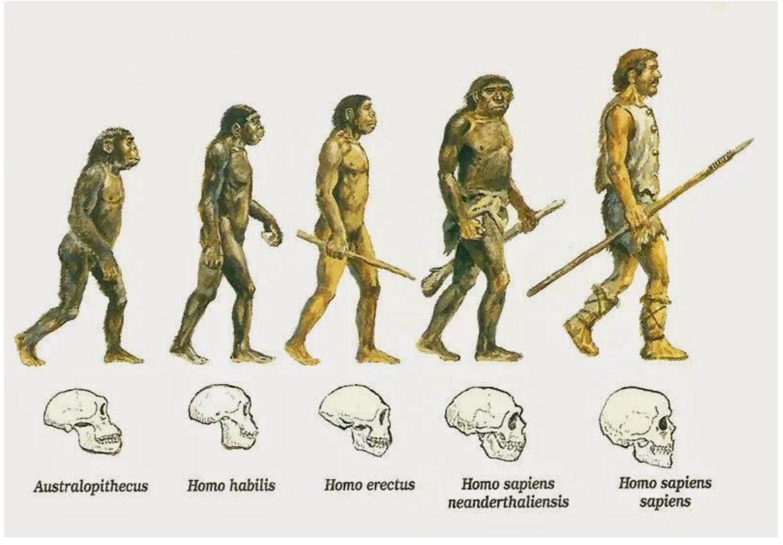 evolucion de la productividad en españa